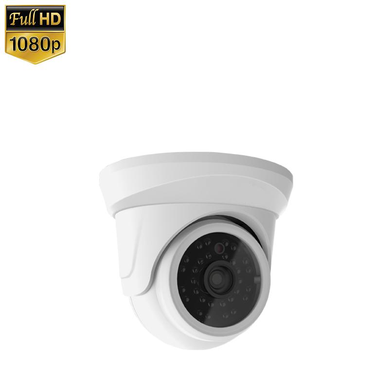 IP Camera Mini Dome 2MP 1080P POE